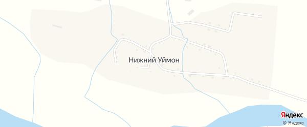 Центральная улица на карте села Нижнего Уймона с номерами домов