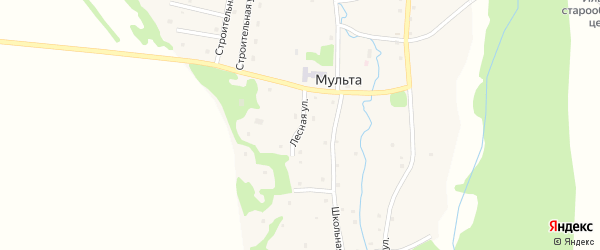 Лесная улица на карте села Мульты с номерами домов