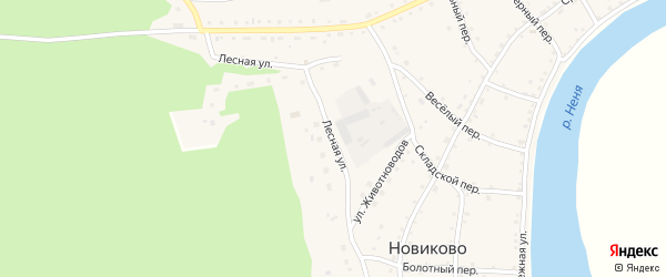 Лесная улица на карте села Новиково с номерами домов