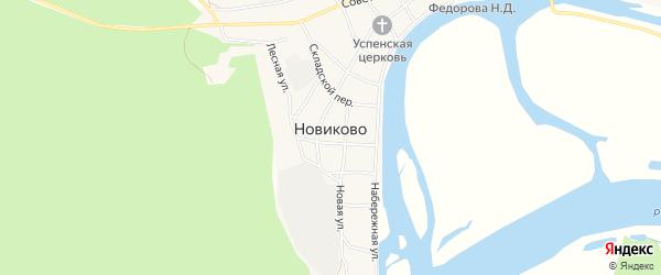 Карта села Новиково в Алтайском крае с улицами и номерами домов