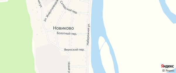 Набережная улица на карте села Новиково с номерами домов