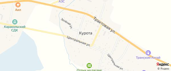 Зеленая улица на карте села Куроты с номерами домов