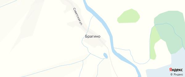 Карта села Брагино в Алтайском крае с улицами и номерами домов