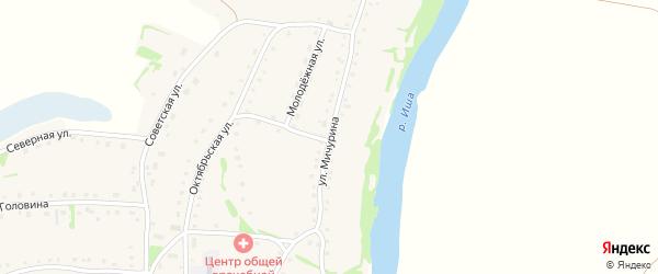 Улица Мичурина на карте села Усть-Иша с номерами домов