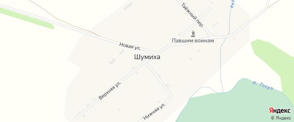 Новая улица на карте села Шумихи с номерами домов
