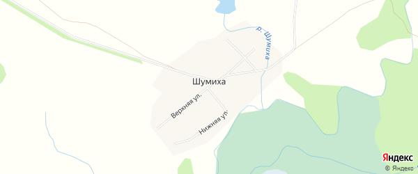 Карта села Шумихи в Алтайском крае с улицами и номерами домов