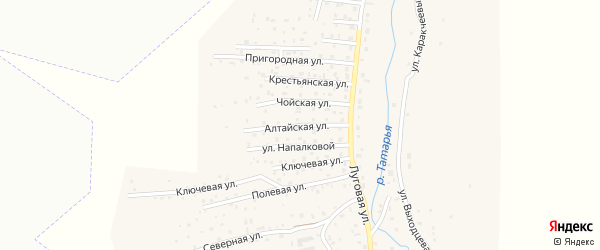 Алтайская улица на карте поселка т/б Юность с номерами домов