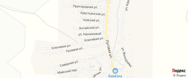 Ключевая улица на карте поселка Алферово с номерами домов