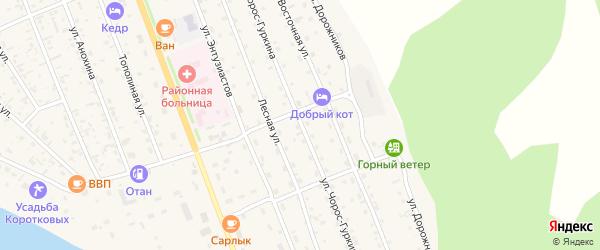 Улица Чорос-Гуркина на карте села Чемал с номерами домов