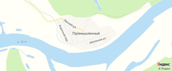 Карта Промышленного поселка в Алтайском крае с улицами и номерами домов