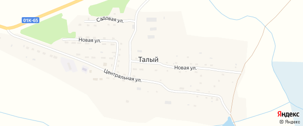 Новая улица на карте Талого поселка с номерами домов