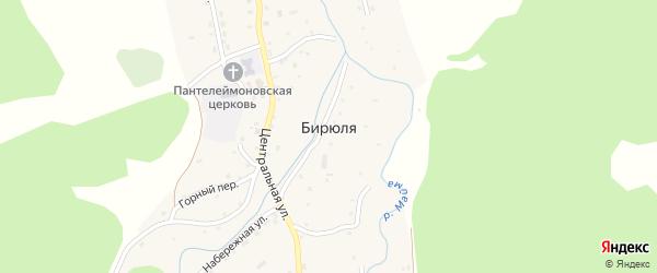Луговая улица на карте села Бирюли с номерами домов