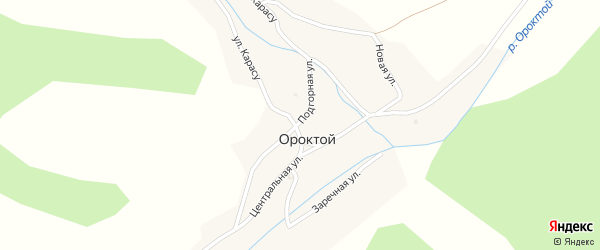 Центральная улица на карте села Ороктой с номерами домов