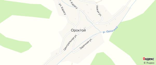 Заречная улица на карте села Ороктой с номерами домов
