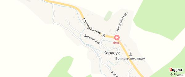 Заречная улица на карте села Карасука с номерами домов