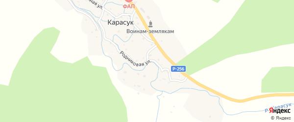 Родниковая улица на карте села Карасука с номерами домов