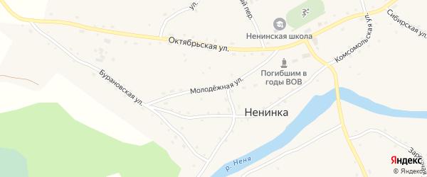 Молодежная улица на карте села Ненинки с номерами домов