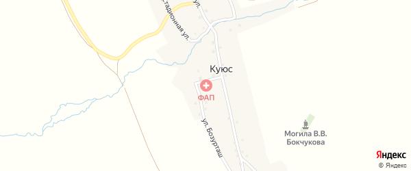 Центральная улица на карте села Куюс с номерами домов