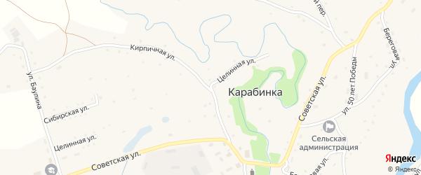 Целинная улица на карте села Карабинка с номерами домов