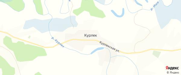 Карта поселка Курлека в Алтайском крае с улицами и номерами домов