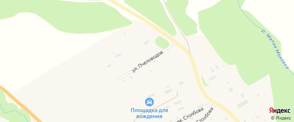 Улица Пчеловодов на карте села Ельцовки с номерами домов