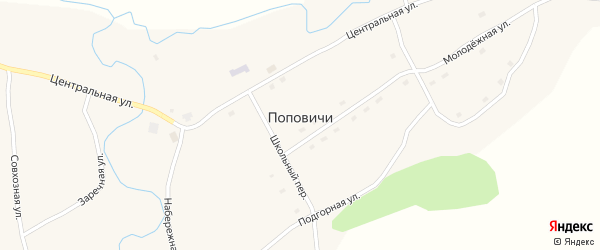 Совхозная улица на карте села Поповичи с номерами домов
