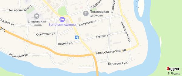 Лесная улица на карте села Ельцовки с номерами домов