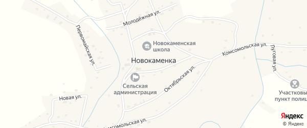 Новая улица на карте села Новокаменки с номерами домов