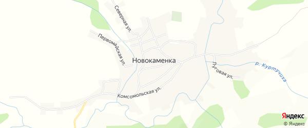 Карта села Новокаменки в Алтайском крае с улицами и номерами домов