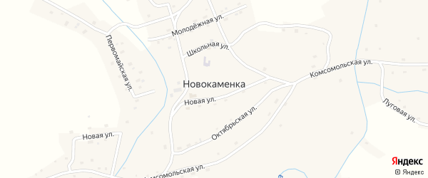 Октябрьская улица на карте села Новокаменки с номерами домов