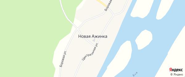 Боровая улица на карте села Новой Ажинки с номерами домов