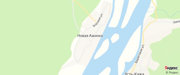 Карта села Новой Ажинки в Алтайском крае с улицами и номерами домов