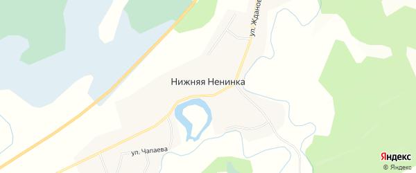 Карта села Нижней Ненинки в Алтайском крае с улицами и номерами домов