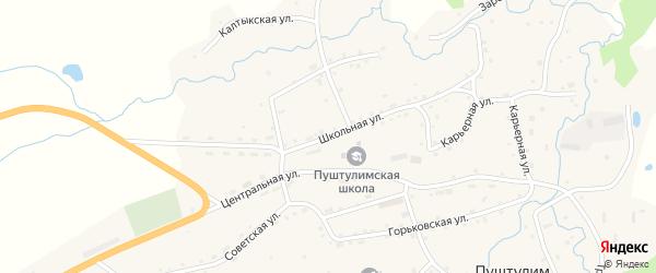 Школьная улица на карте села Пуштулима с номерами домов