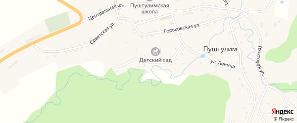 Луговая улица на карте села Пуштулима с номерами домов