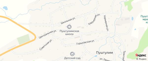 Центральная улица на карте села Пуштулима с номерами домов