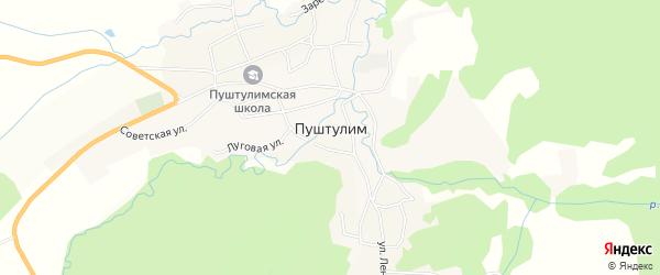 Карта села Пуштулима в Алтайском крае с улицами и номерами домов