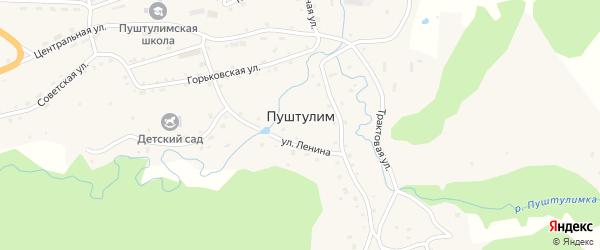 Улица Механизаторов на карте села Пуштулима с номерами домов