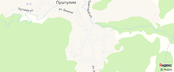Улица Ленина на карте села Пуштулима с номерами домов