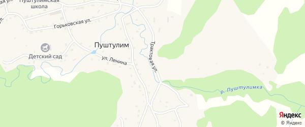 Трактовая улица на карте села Пуштулима с номерами домов