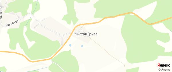 Карта села Чистой Гривы в Алтайском крае с улицами и номерами домов