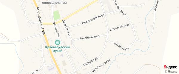 Ручейный переулок на карте села Солтона с номерами домов