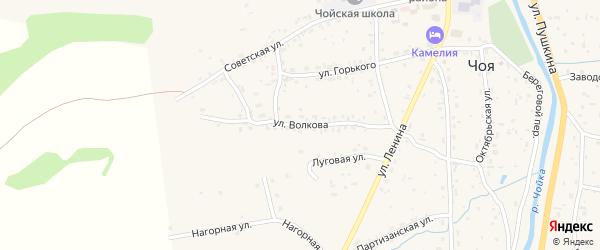 Улица Волкова на карте села Чоя с номерами домов