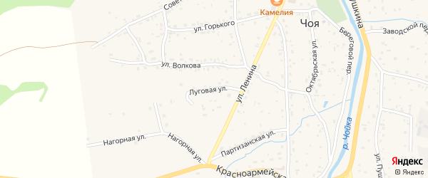 Луговая улица на карте села Чоя с номерами домов