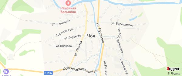 Карта села Чоя в Алтае с улицами и номерами домов