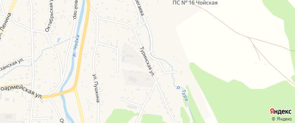Туринская улица на карте села Чоя с номерами домов