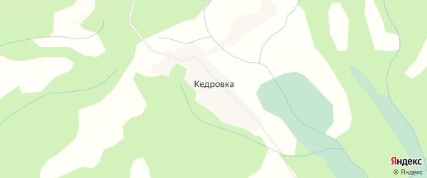 Карта села Кедровки в Алтайском крае с улицами и номерами домов