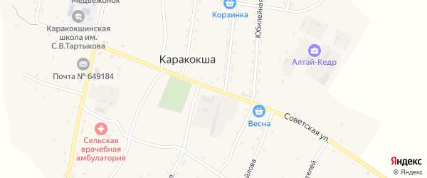 Советская улица на карте села Каракокши с номерами домов