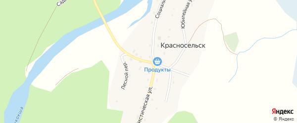 Речная улица на карте села Красносельска с номерами домов