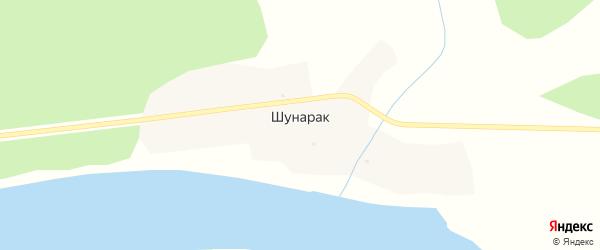 Алтайская улица на карте села Шунарака с номерами домов